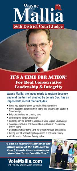Palm Card for Judge Candidate Vertical layout